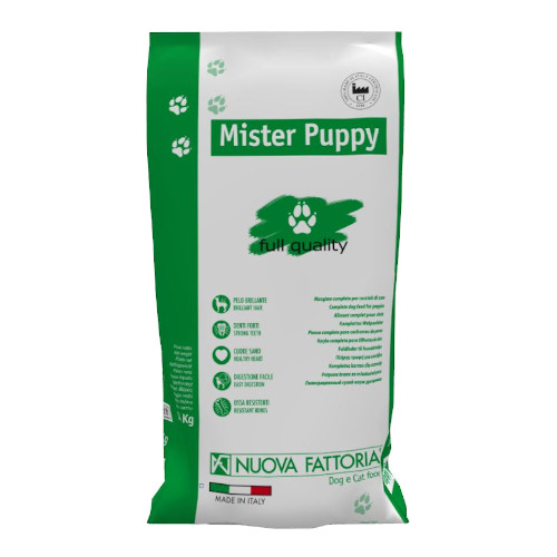 Sacco Mister Puppy