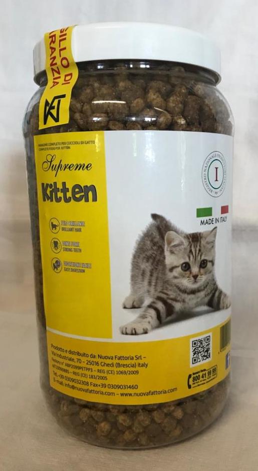Nuova Fattoria Kitten